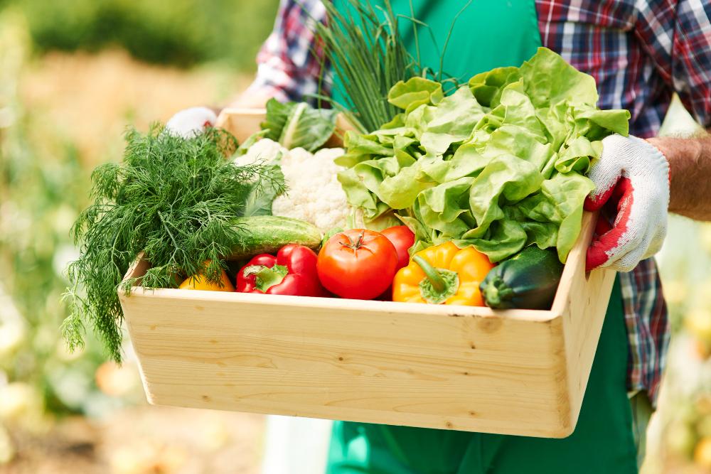 légumes bandeau