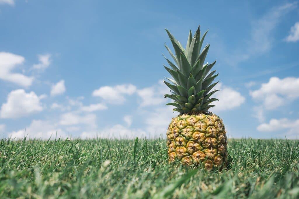 bienfaits-ananas-2