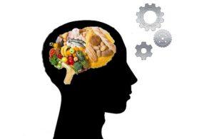 faim-satiete-appetit-cerveau-aliment-mecanismes-determinants
